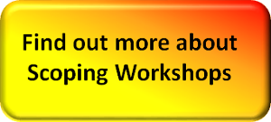 find out more scoping workshop