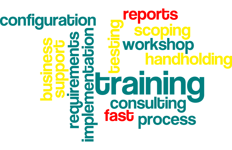 Consulting Services - scoping, implementation, configuration and training
