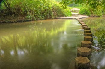 Stepping stones to get to the other side of CRM issues